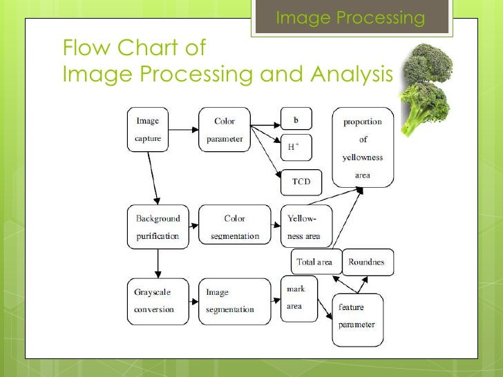 Image Processing Flow Chart of Image Processing and Analysis