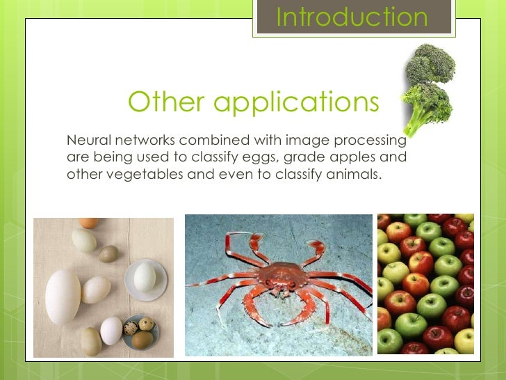 Other applications Neural networks combined with image processing are being used to classify eggs, grade apples and other ...