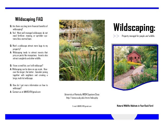 Wildscaping FAQQ: Are there any long term financial benefits of   wildscaping?A: Yes! Most well managed wildscapes do not ...