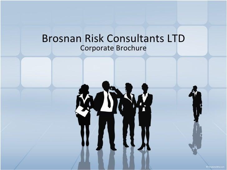 Brosnan Risk Consultants LTD Corporate Brochure