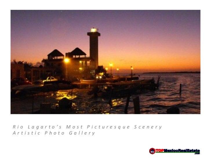 Rio Lagarto's Most Picturesque SceneryArtistic Photo Gallery