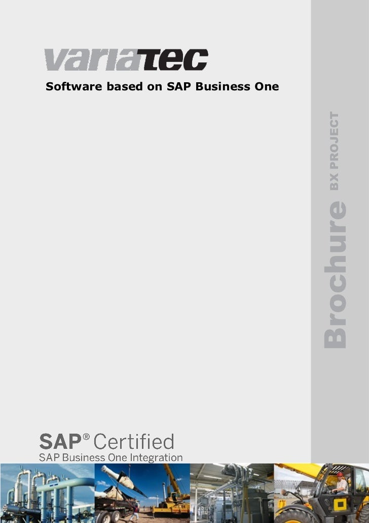 Software based on SAP Business One                                       BX PROJECT                                     Br...