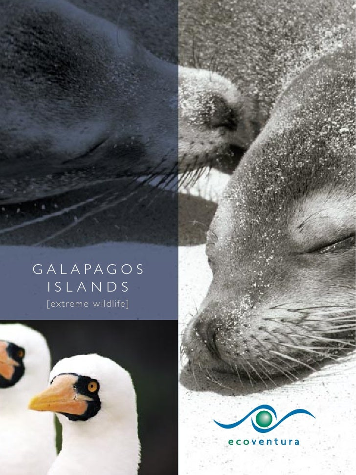 G A L A PAG O S   ISLANDS  [extreme wildlife]