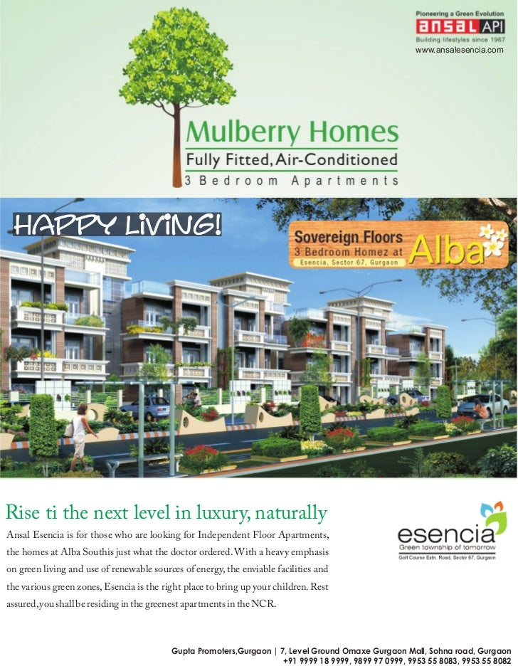 Ansal mulberry homes gurgaon 9999189999 for Mullberry home