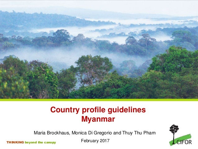 THINKING beyond the canopy Maria Brockhaus, Monica Di Gregorio and Thuy Thu Pham February 2017 Country profile guidelines ...