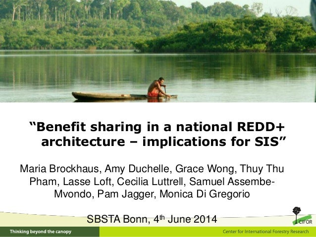 """""""Benefit sharing in a national REDD+ architecture – implications for SIS"""" Maria Brockhaus, Amy Duchelle, Grace Wong, Thuy ..."""