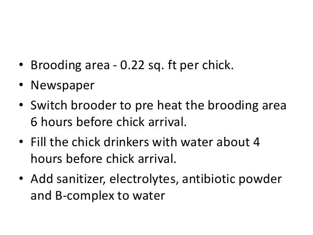 • Brooding area - 0.22 sq. ft per chick. • Newspaper • Switch brooder to pre heat the brooding area 6 hours before chick a...