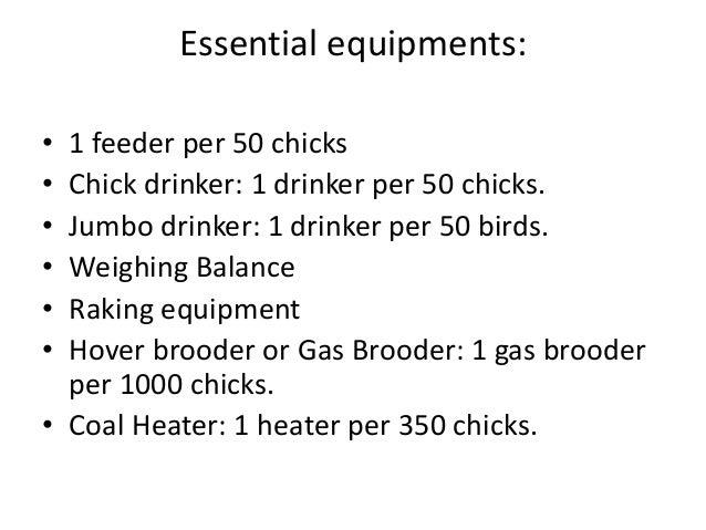 Essential equipments: • 1 feeder per 50 chicks • Chick drinker: 1 drinker per 50 chicks. • Jumbo drinker: 1 drinker per 50...