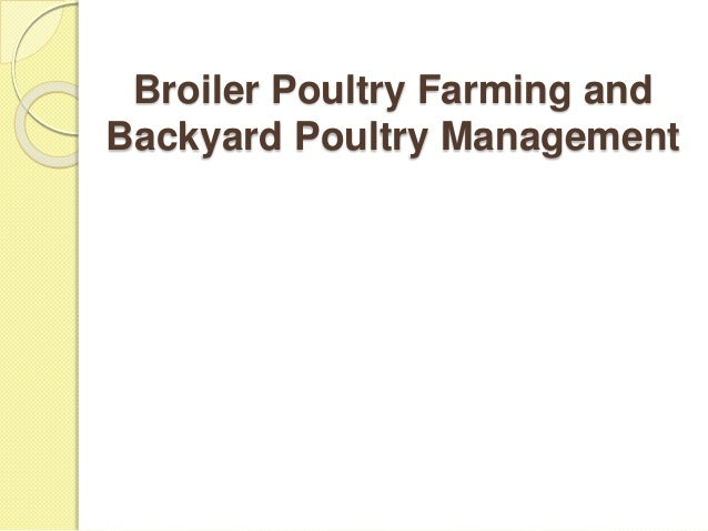 Broiler Poultry Farming and Backyard Poultry Management