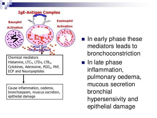 Bronchial asthma 2