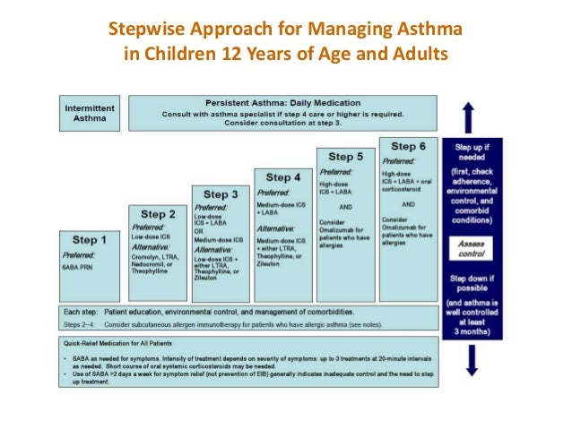 ICU Protocols A Stepwise Approach Zip