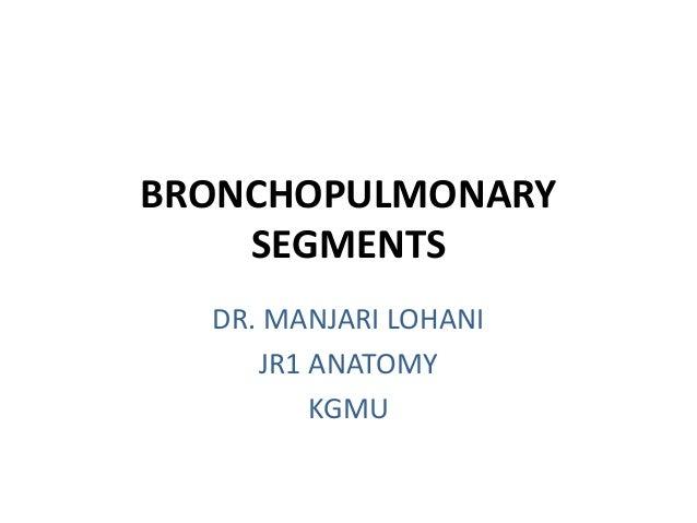 BRONCHOPULMONARY SEGMENTS DR. MANJARI LOHANI JR1 ANATOMY KGMU