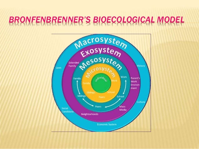 analysis of bronfenbrenner theory