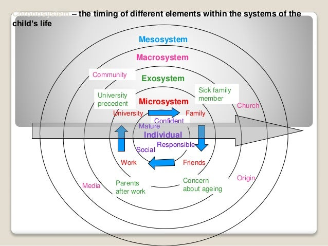 bronfenbrenners ecological model The outline for urie bronfenbrenners children and young people essay urie bronfenbrenner ecological systems theory explains how people and the environment influence on children's growth and development.