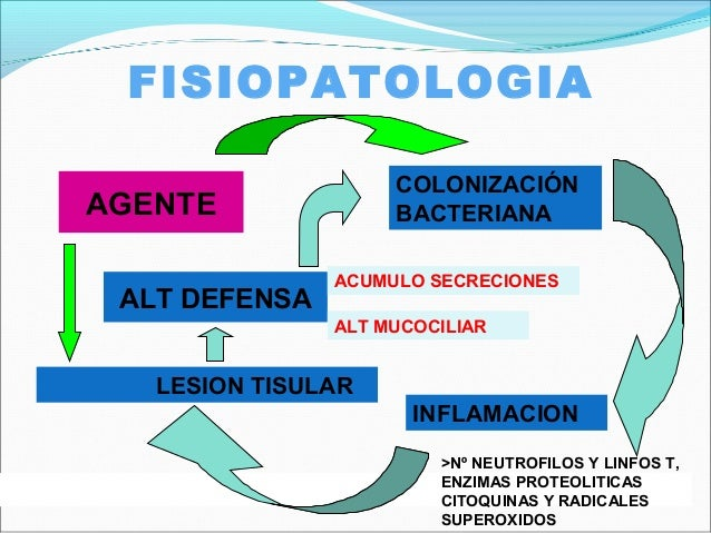 FISIOPATOLOGIAAGENTECOLONIZACIÓNBACTERIANAINFLAMACIONLESION TISULARALT DEFENSAACUMULO SECRECIONESALT MUCOCILIAR>Nº NEUTROF...
