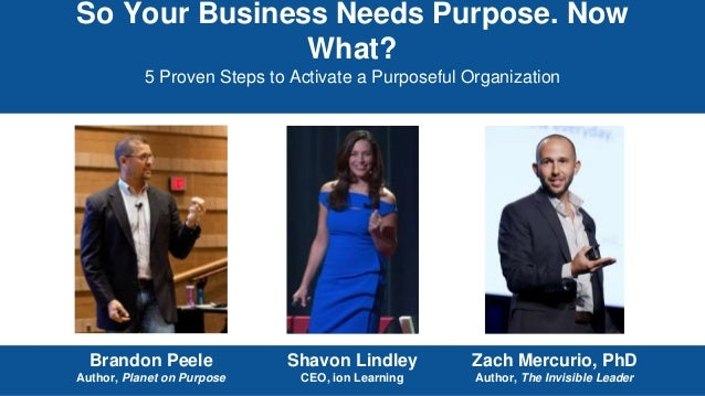 So Your Business Needs Purpose. Now What? 5 Proven Steps to Activate a Purposeful Organization Brandon Peele Author, Plane...