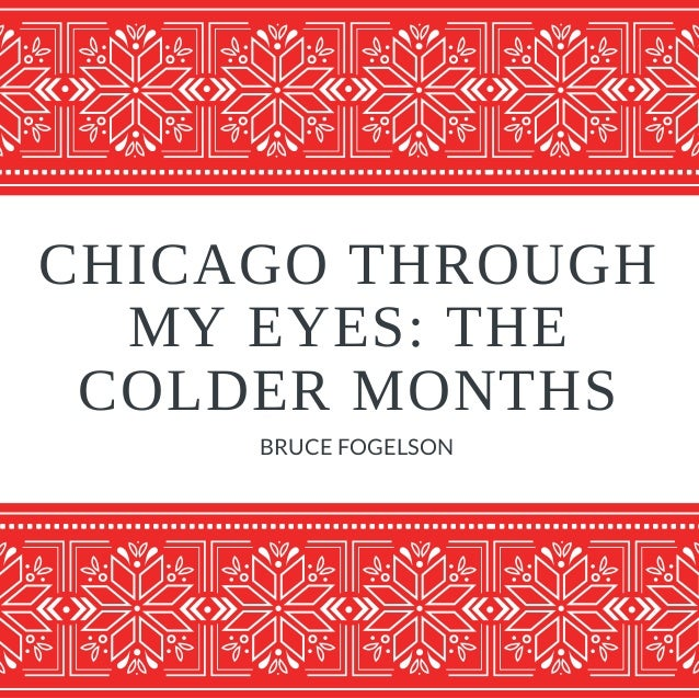 CHICAGO THROUGH MY EYES: THE COLDER MONTHS BRUCE FOGELSON