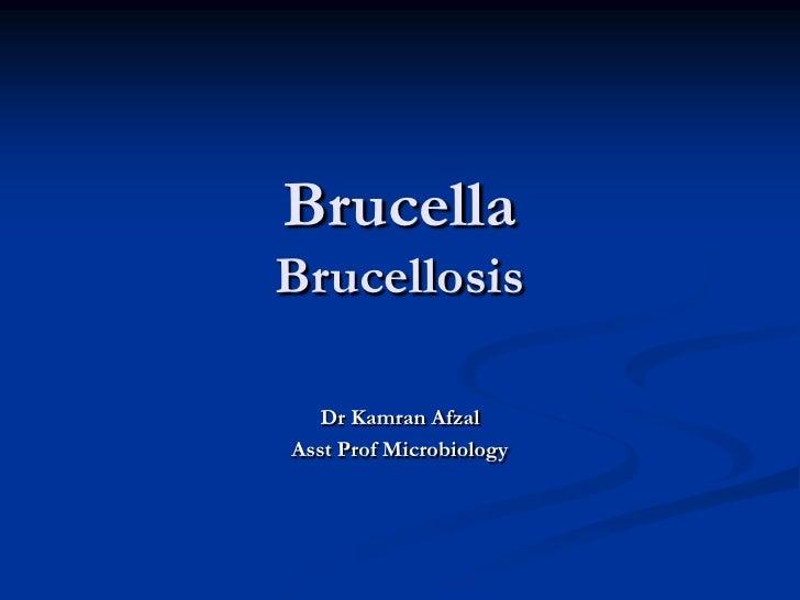 BrucellaBrucellosis   Dr Kamran AfzalAsst Prof Microbiology