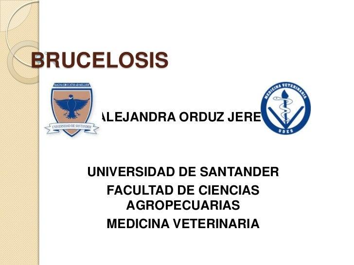 BRUCELOSIS     ALEJANDRA ORDUZ JEREZ    UNIVERSIDAD DE SANTANDER      FACULTAD DE CIENCIAS         AGROPECUARIAS      MEDI...