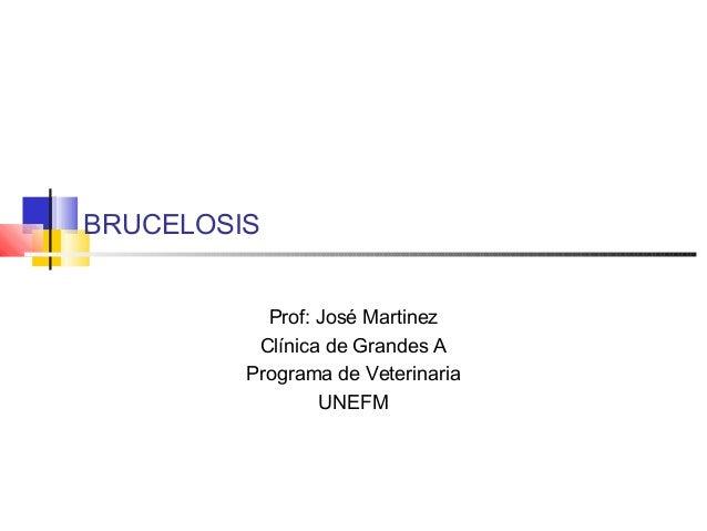 BRUCELOSIS Prof: José Martinez Clínica de Grandes A Programa de Veterinaria UNEFM