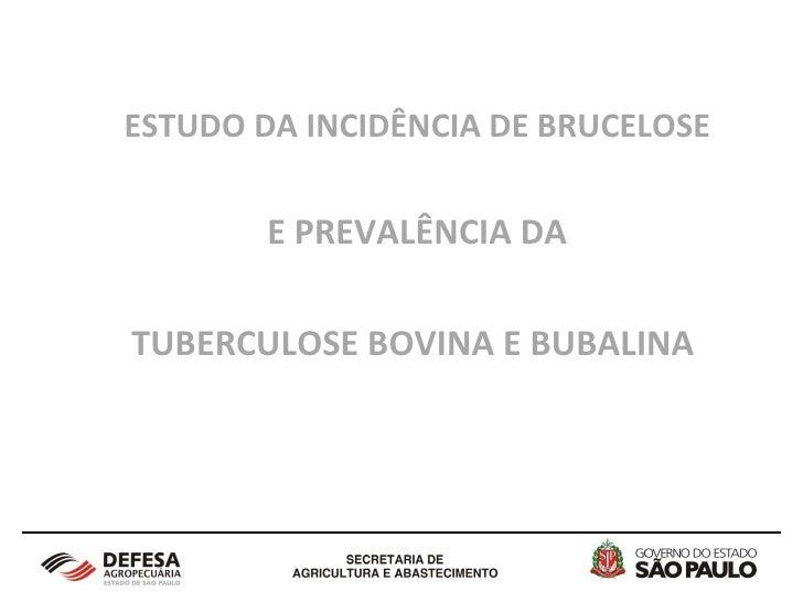 ESTUDO DA INCIDÊNCIA DE BRUCELOSE E PREVALÊNCIA DA  TUBERCULOSE BOVINA E BUBALINA