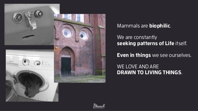 Mammals are biophilic. We are constantly seeking patterns of Life itself. Even in things we see ourselves. WE LOVE AND AR...