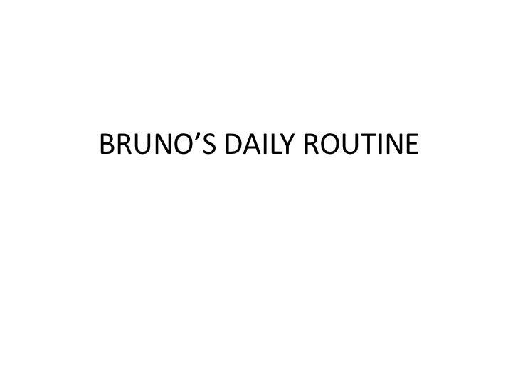 BRUNO'S DAILY ROUTINE