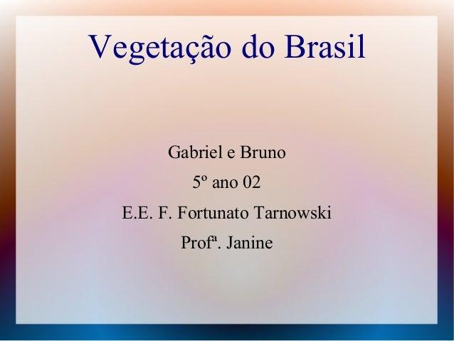 Vegetação do BrasilGabriel e Bruno5º ano 02E.E. F. Fortunato TarnowskiProfª. Janine