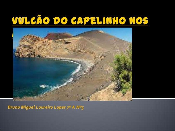 Bruno Miguel Loureiro Lopes 7º A Nº5