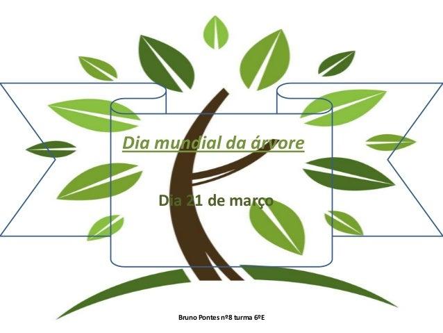 Dia mundial da árvore    Dia 21 de março      Bruno Pontes nº8 turma 6ºE