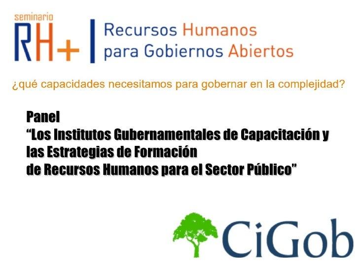 """Panel""""Los Institutos Gubernamentales de Capacitación ylas Estrategias de Formaciónde Recursos Humanos para el Sector Públi..."""