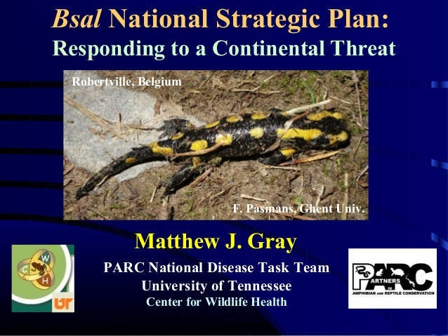 Bsal National Strategic Plan: Responding to a Continental Threat PARC National Disease Task Team University of Tennessee C...
