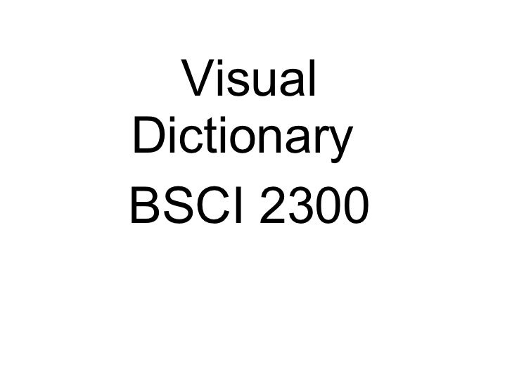 Visual Dictionary  BSCI 2300