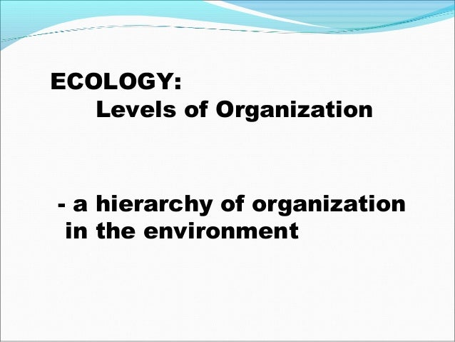 Biotechnology and Negative Effects on the Environment ...