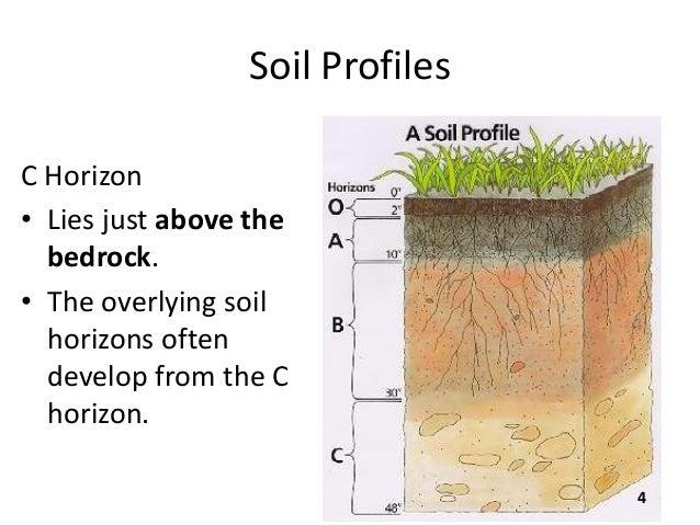 B sc micro biotech biochem i es u 3 2 soil for Define what is soil