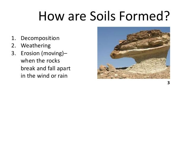 B sc micro biotech biochem i es u 3 2 soil for What is soil made from