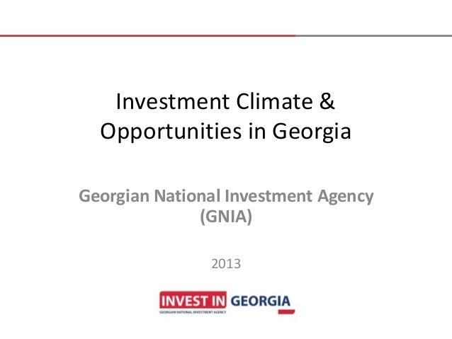 Investment Climate & Opportunities in Georgia Georgian National Investment Agency (GNIA) 2013