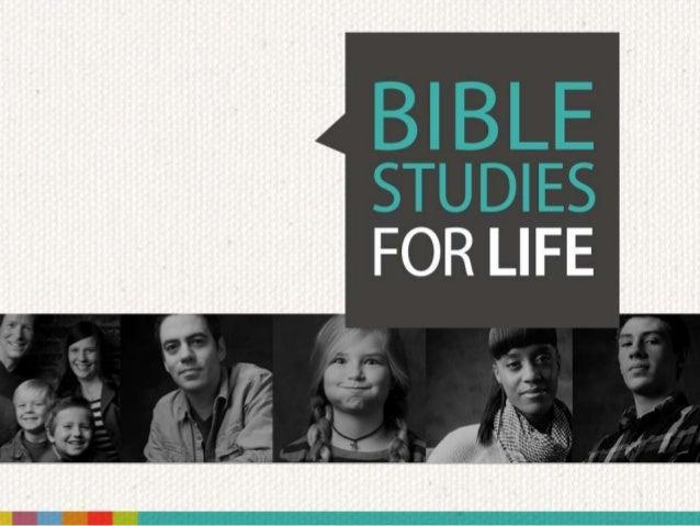 Theology Life Text Your Church