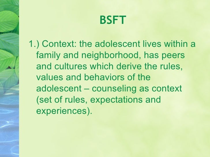 brief strategic family therapy manual
