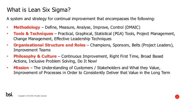 BSI - A  Short Introduction to Process Excellence and Lean Six Sigma Slide 3