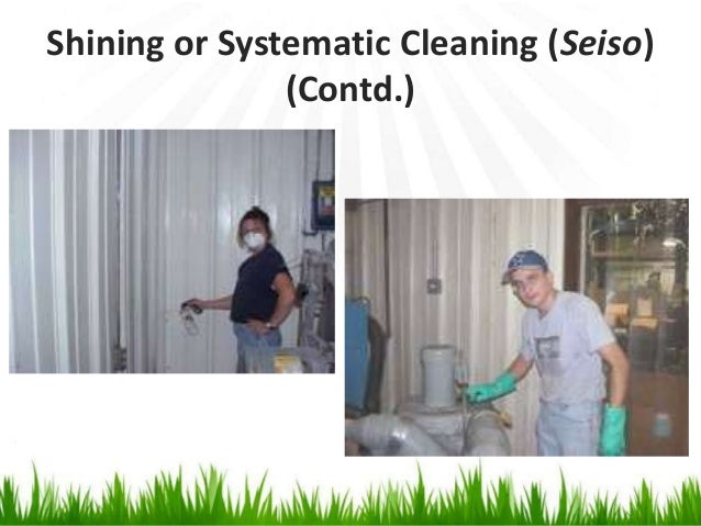 Shining or Systematic Cleaning (Seiso) (Contd.)