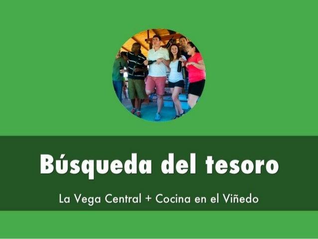 Búsqueda del tesoro  La Vega Central + Cocina en el Viñedo