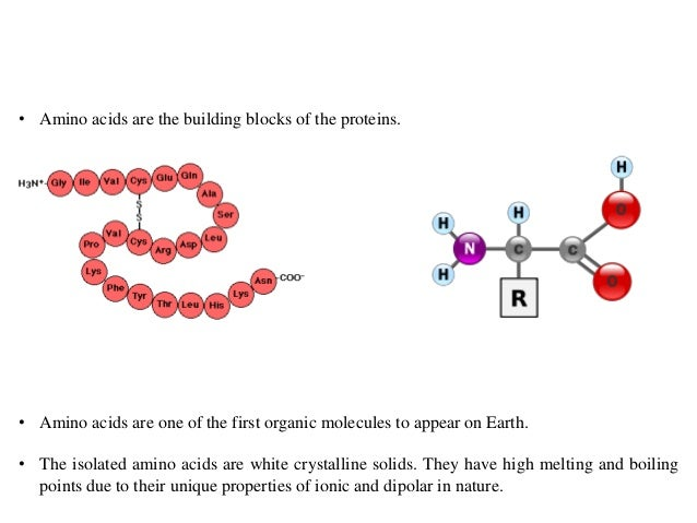 BT631-3-amino_acids Slide 2
