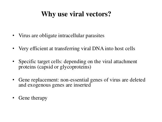 Viral Vectors For Gene Transfer
