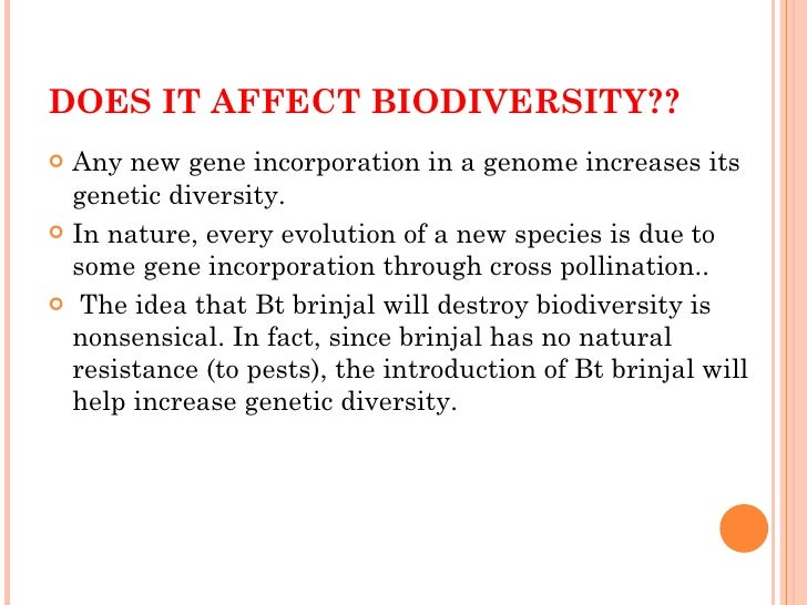 ppt on bt brinjal Current status of research and development of genetically engineered plants in  transformation and selection using ppt  were released as bari bt brinjal-1.