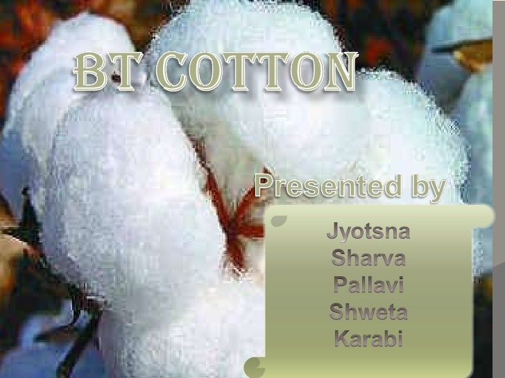 Bt cotton presentation12