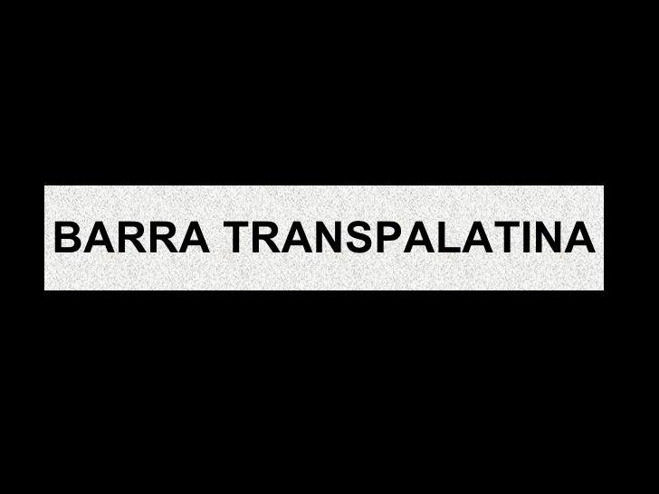BARRA TRANSPALATINA