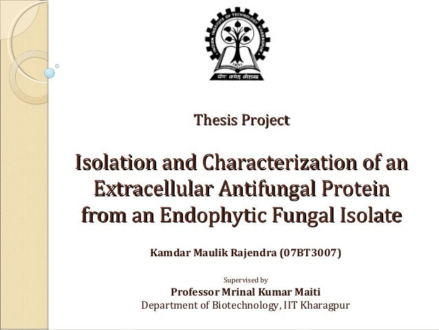 Thesis Project  Isolation and Characterization of an Extracellular Antifungal Protein from an Endophytic Fungal Isolate Ka...