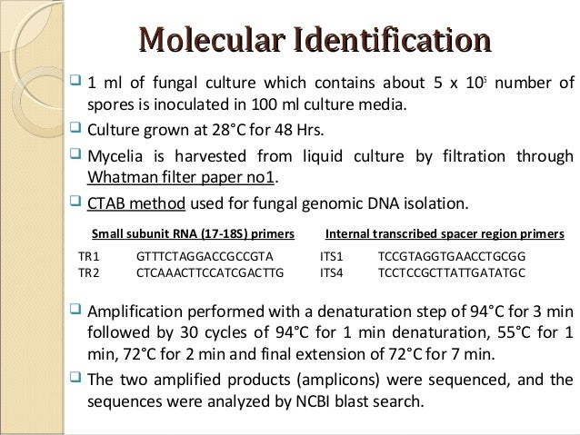 isolation and identification of thermophilic fungi essay Characterization of thermophilic fungal community associated with pile thermophilic fungi emerging in the process isolation and identification of fungi.