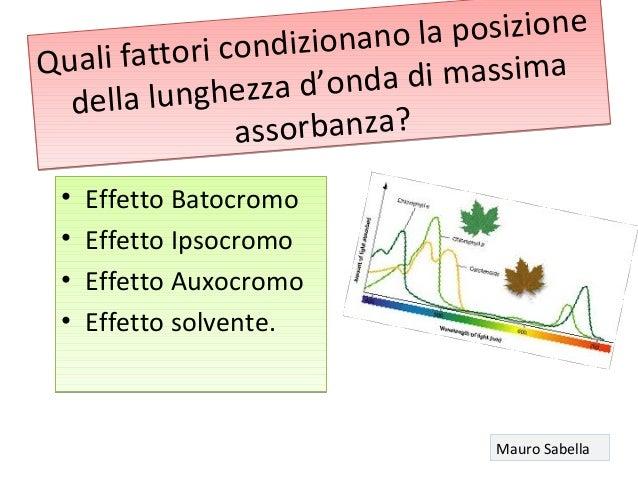 Quali fattori condizionano la posizione della lunghezza d'onda di massima assorbanza? Quali fattori condizionano la posizi...